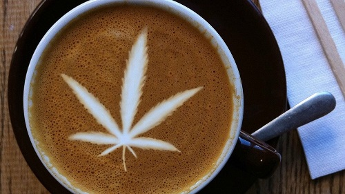 Why Choose Selling CBD Oil Online over Starting a Traditional Coffee Shop
