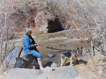 Rediscovering Myself Spreading Husband's Ashes Along Jemez Mountain Trail