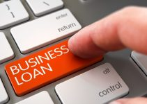 types of business loans company loan options