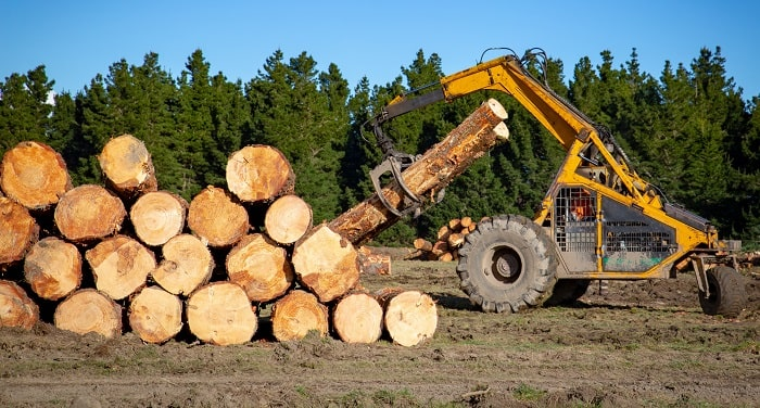 how to start a logging company