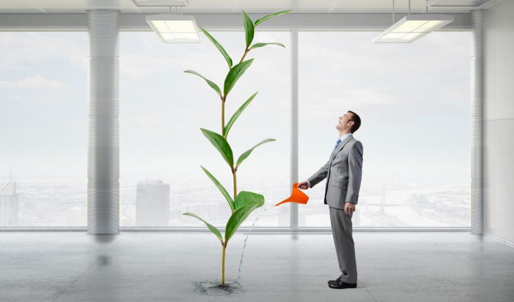 growing your business company expansion growth