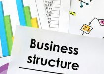 What Are the Different Types of Business Structures Available Today?