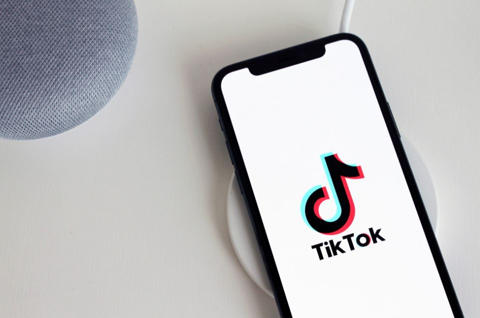what is the tiktok hype house who lives there social media influencers netflix show